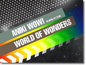 Aniki wow! (アニキサウナ)